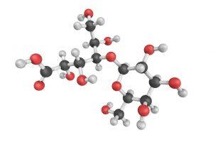 Acido lactobionico